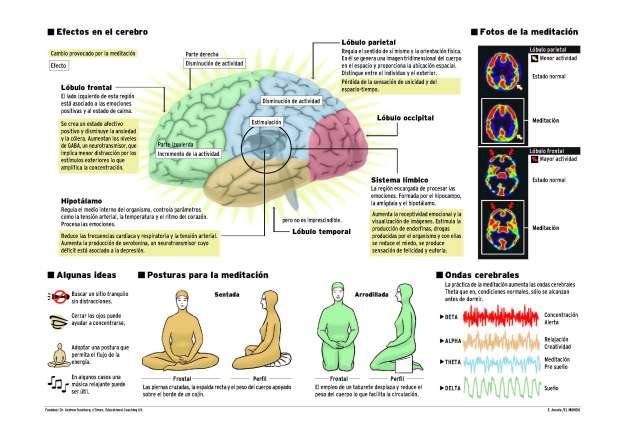 efectos-de-la-meditación-en-el-cerebro