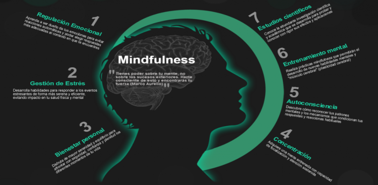 Banner-Mindfulness-1024x502