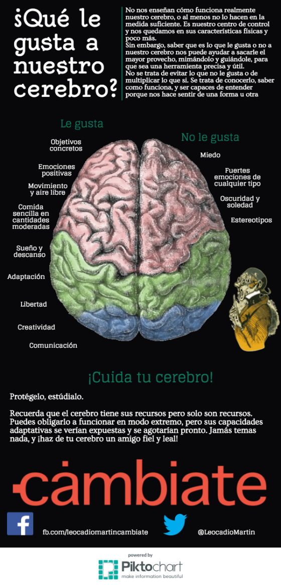 cerebro01