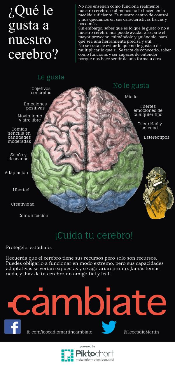 cerebro01_11478085 (1).png